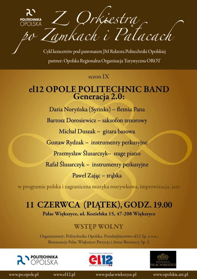 Koncert Pałac Większyce.jpeg