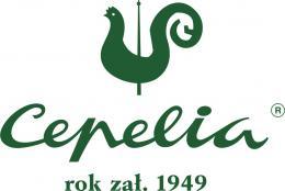 logo_cep_kwadrat_rok_zal_rgb.jpeg